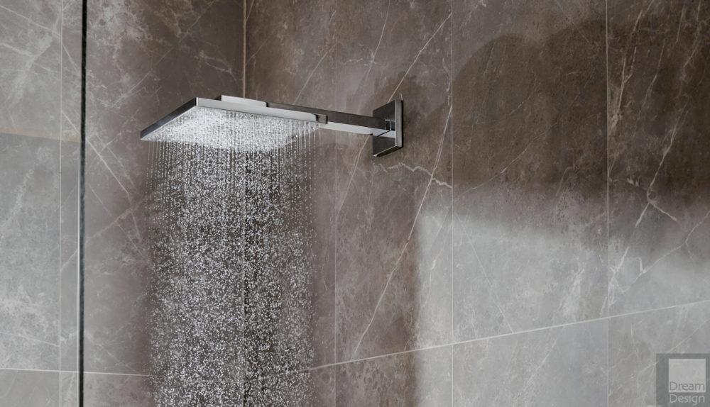 Hansgrohe Raindance Shower
